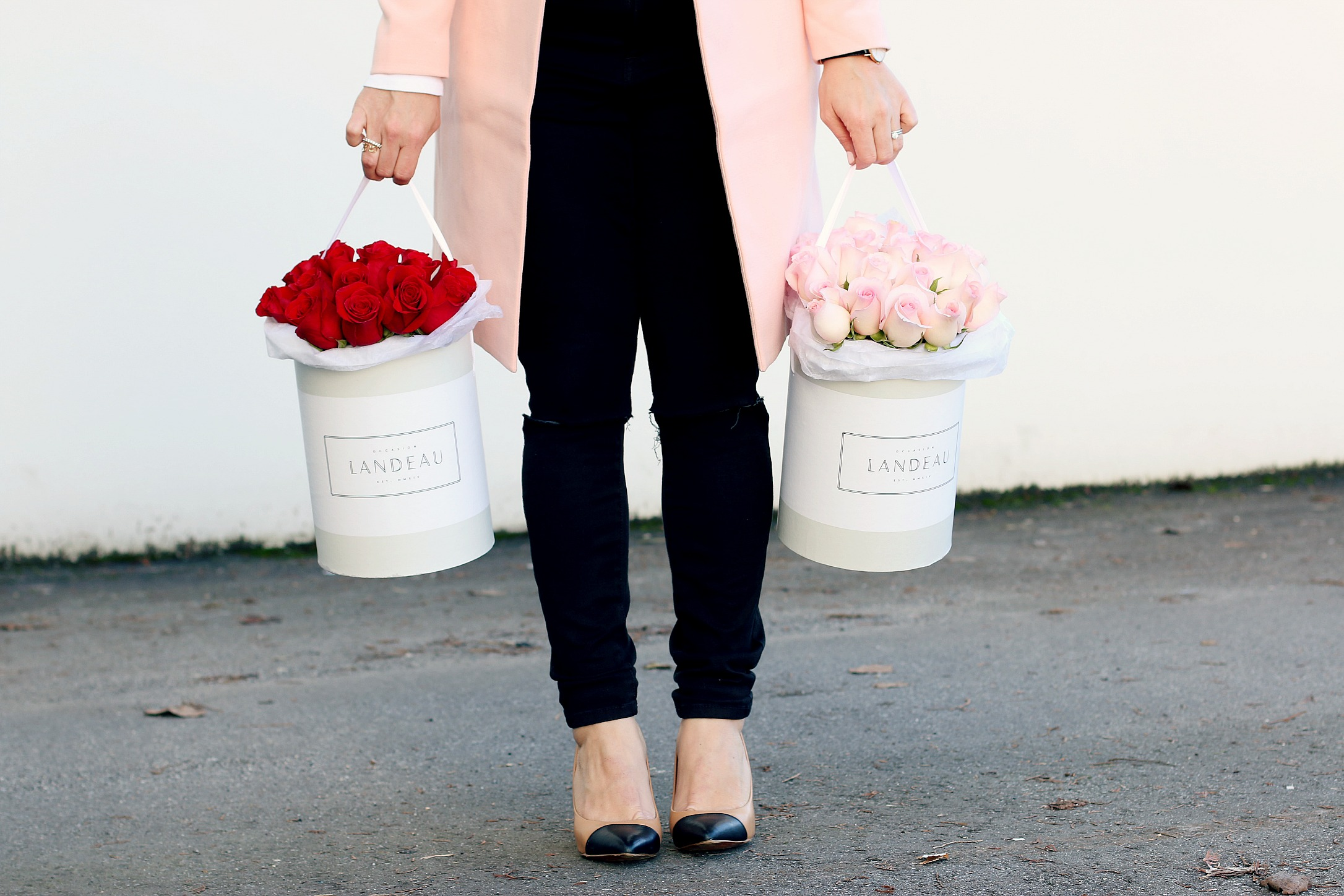 Valentines Day Give Landeau Roses Monika HIbbs